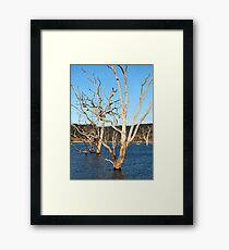 Lake Eildon Framed Print