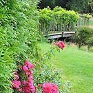Springfields Garden (Spalding) by CreativeEm
