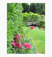 Springfields Garden (Spalding) Photographic Print