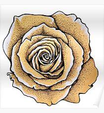 Beautiful rose flower Poster