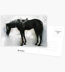 majestic wild ass Postcards