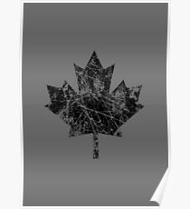 Canadian Maple Leaf Grunge Distressed Style Poster