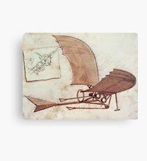 Da Vinci's flying machine Metal Print