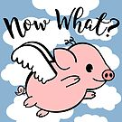 When Pigs Fly - Now What by Katy Rochelle