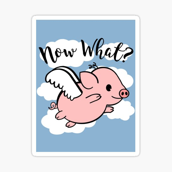 When Pigs Fly - Now What Sticker