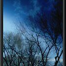 Sky by IVfuturist