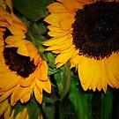 Bright Sunflowers by HeavenOnEarth