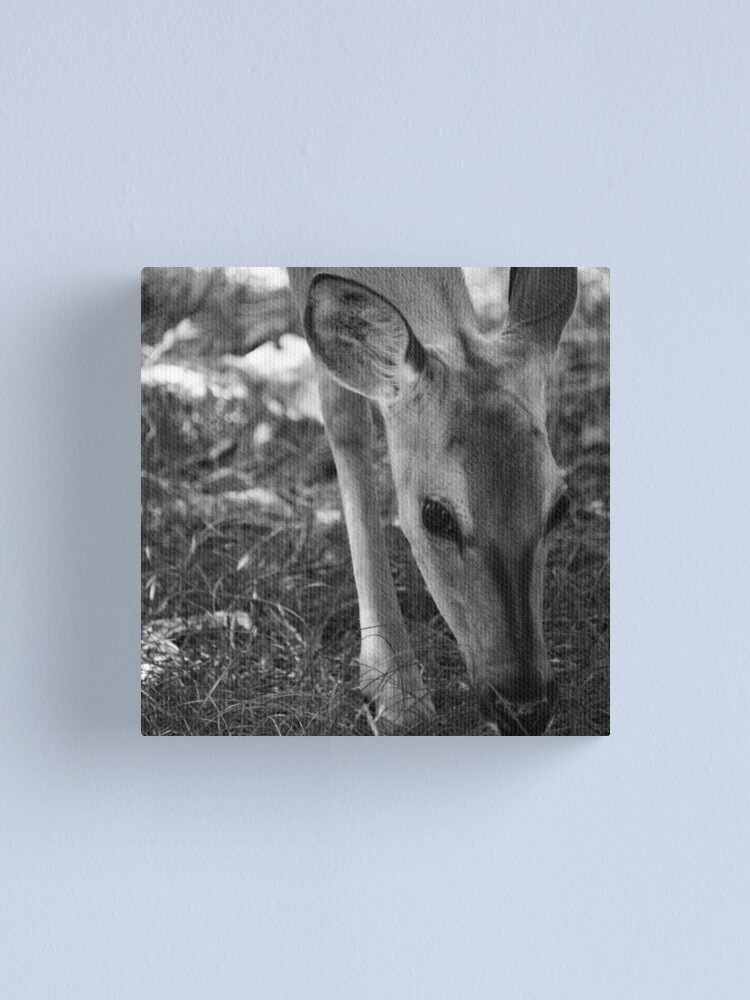 Alternate view of Shy girl Canvas Print