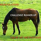 Equine Art and Photography Runner-up Banner by BlueMoonRose