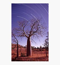 Boab tree and star trails Photographic Print