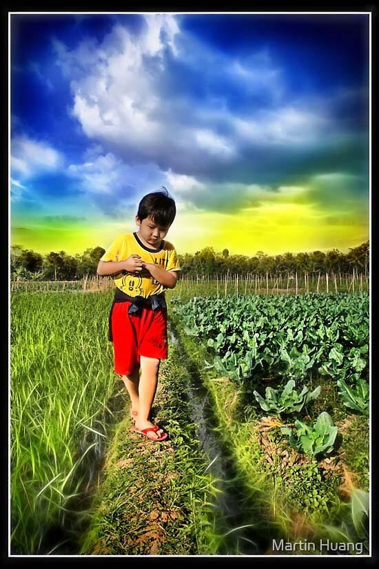 My Nephew by Martin Huang
