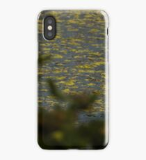 Observations of a Heron iPhone Case/Skin