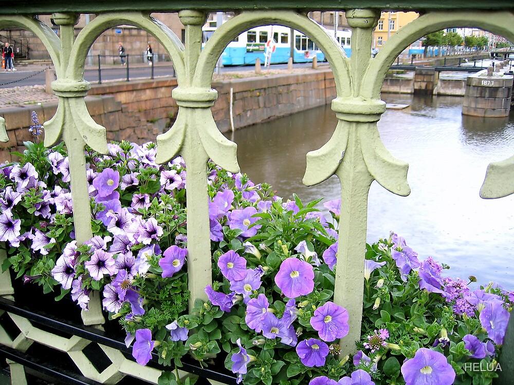 City Flowers by HELUA