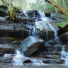 Somersby Falls - Gosford NSW by Bev Woodman