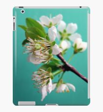 Still Life with Spring iPad Case/Skin