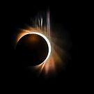 Solar Eclipse 2017 event in South Carolina sky by ALEX GRICHENKO