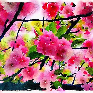 Pink Flowers  by elizabethamira