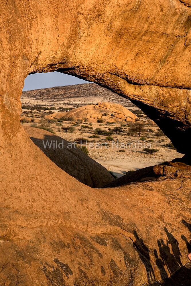 Eye on Namibia by Wild at Heart Namibia
