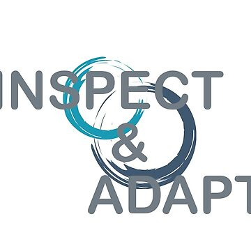 Inspect and Adapt by clone1