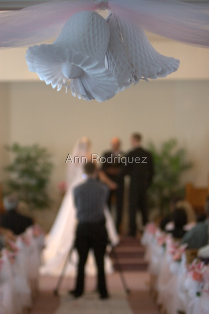 I Hear Wedding Bells by Ann Rodriquez