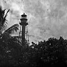 LighthouseTower by Bill Wetmore