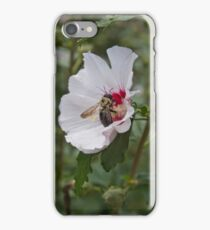 Every Day I'm Pollinatin' iPhone Case/Skin