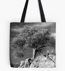 Acacia Tree, Namibia Tote Bag