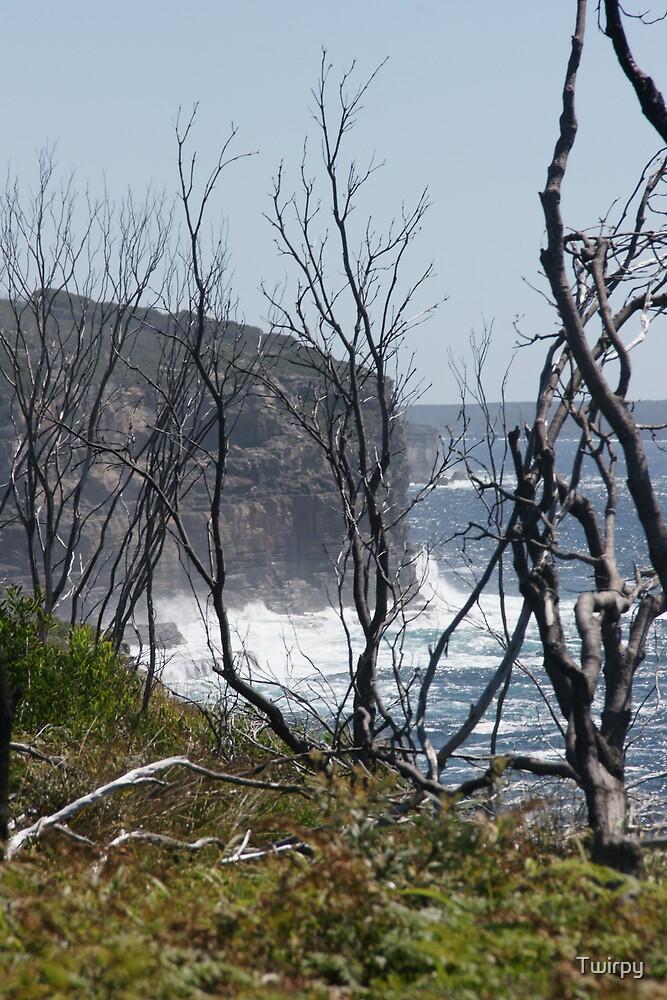 Rugged Coastline by Twirpy
