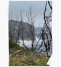 Rugged Coastline Poster
