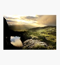 Kerry Gold Photographic Print