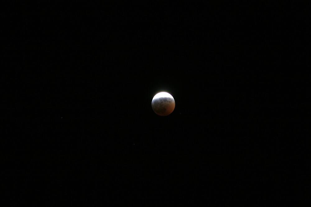 Lunar Eclipse, March 2006 by Tim Light