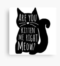 Are You Kitten Me Canvas Print