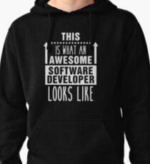 Software Developers are Best Pullover Hoodie