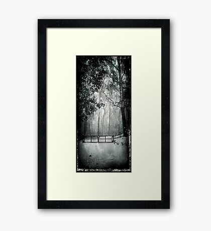 Snow Splendour Framed Print