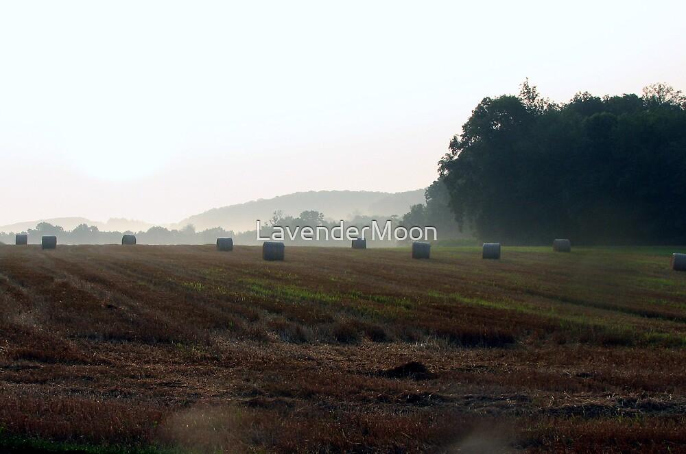 Field Of Hayze by LavenderMoon
