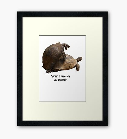 You're Turtley Awesome Framed Print