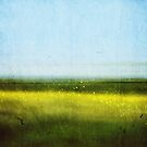 Abstract Landscape No 1: Rapeseed field by Sybille Sterk