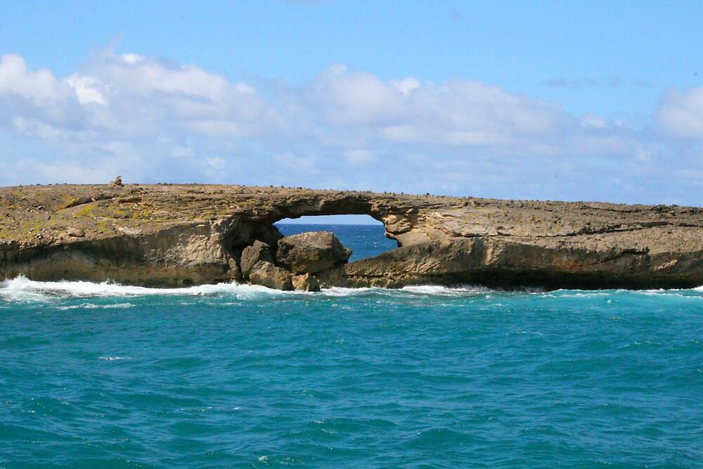 Poseidon's Bridge by CherilynJoy