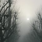 Maida Vale mist by andrewcarr