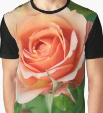 Beautiful pastel pink garden rose and buds Graphic T-Shirt
