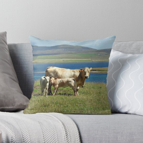Hoy High Lighthouse and cows Orkney Throw Pillow
