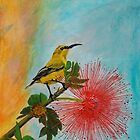 Sunbird by Ciska