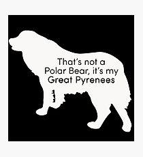 Polar Bear Pyrenees - white on black Photographic Print