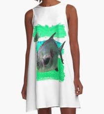 License to Fish A-Line Dress