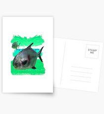License to Fish Postcards