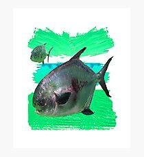 License to Fish Photographic Print