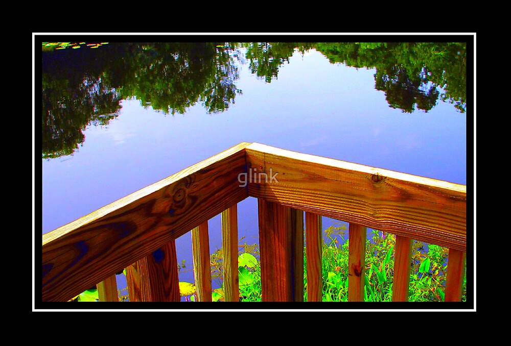Tranquil Reflections by glink