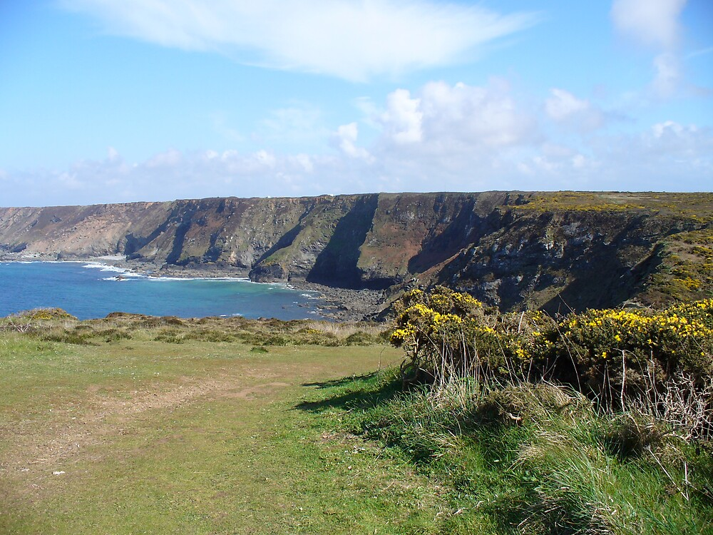 North Coast Cliffs 2 by Niall Curry