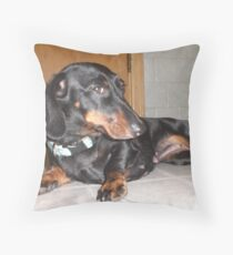 modeling Throw Pillow