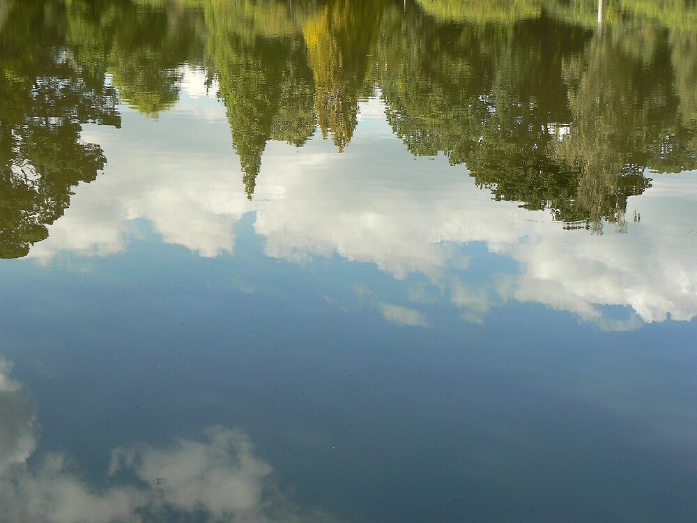 Reflections by Niall Curry